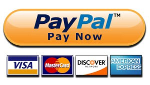 Image result for pay now paypal button